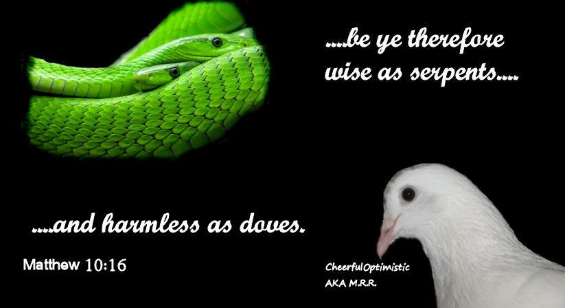 Serpents and Doves | koc12240.org